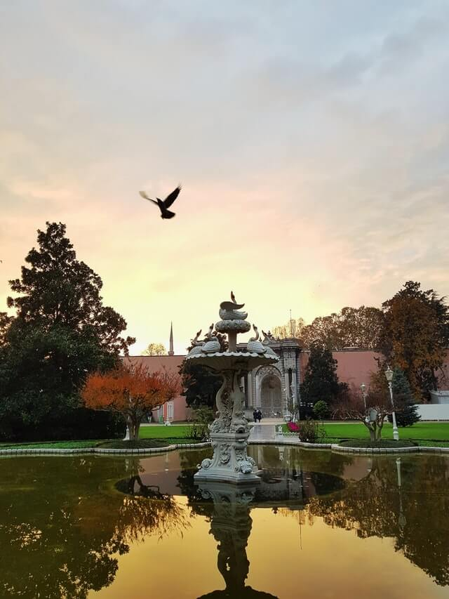 Осень во Дворце Долмабахче